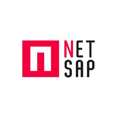 Logo NetSap